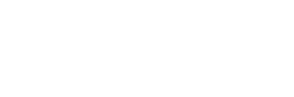White Wazo AI Bird Logo